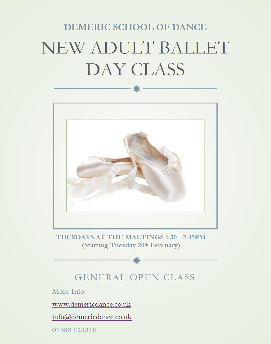 New Adult Ballet Day Class
